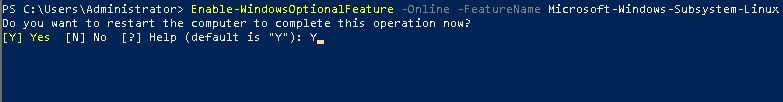使用WSL在Windows Server 2019上运行Linux的方法